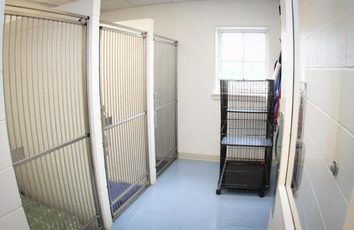 28-kennel-ward-2