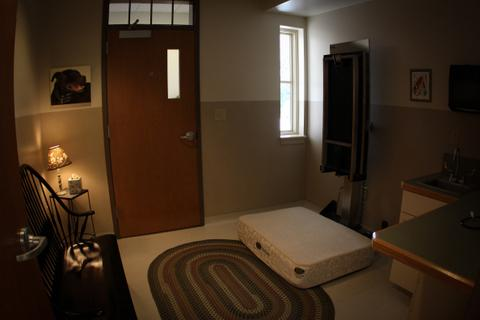 Room 5 - Our Comfort Room