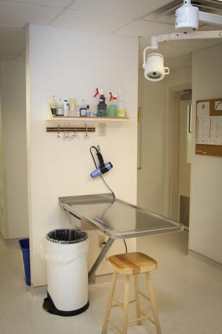 Our Laboratory Collection Area